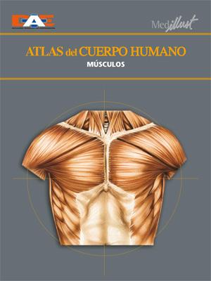 Biblioteca Digital » Atlas del cuerpo humano 4. Músculos