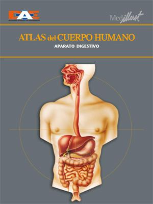 Biblioteca Digital » Atlas del cuerpo humano 8. Aparato digestivo