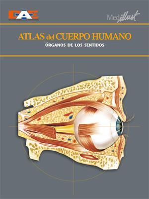 Biblioteca Digital Atlas Del Cuerpo Humano Tomo 16 órganos De Los Sentidos